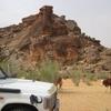 Mauritanie Sur la route de l'Espoir Visite des vaches