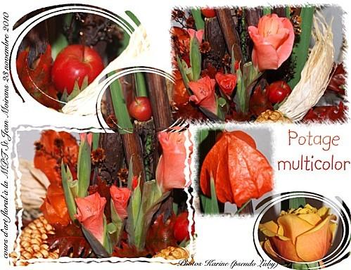 2010 23 11 potage multicolor 1