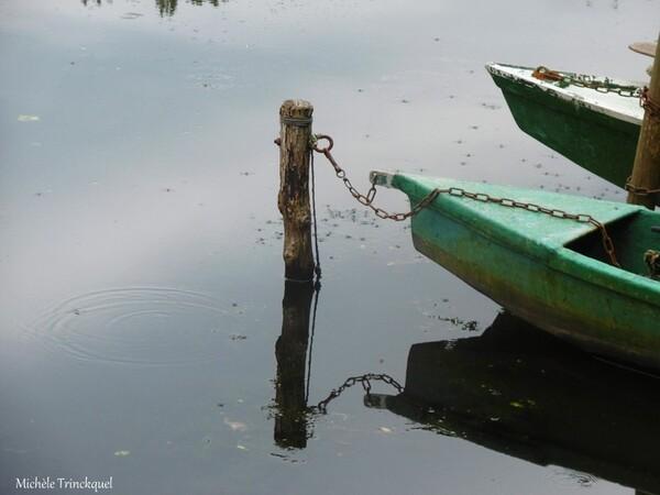 """Une balade """"au bout de ma rue""""... au Lac de LEON (40), le 5 août..."""
