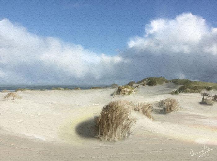 Les dunes Belge