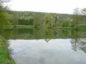 Le circuit des étangs