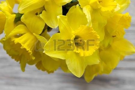 Bouquet of daffodils on wooden background isolated on wooden background