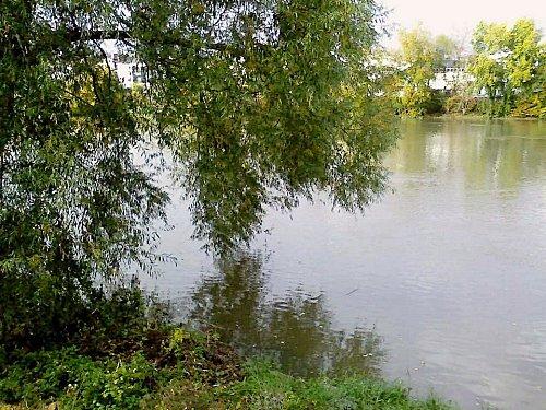bord de Loire 2