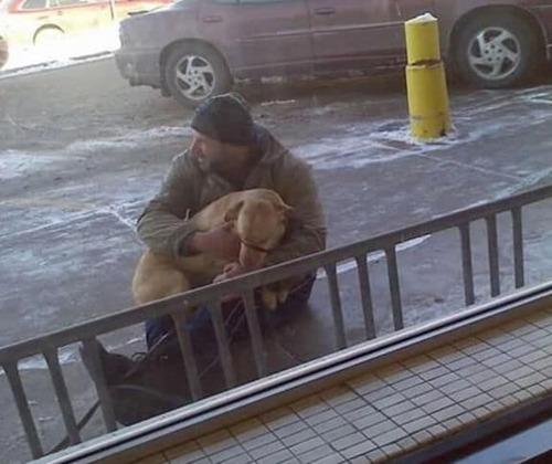 (-*♥*-) Il repère un chien, dehors, par une température de -30°c, et il passe aussitôt à l'action (-*♥*-)