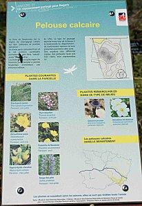 Biotopes0002