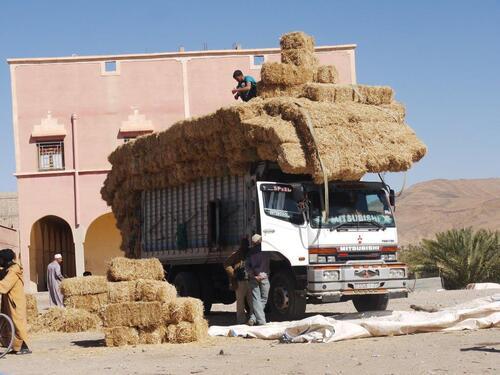 Ici un seul camion de paille