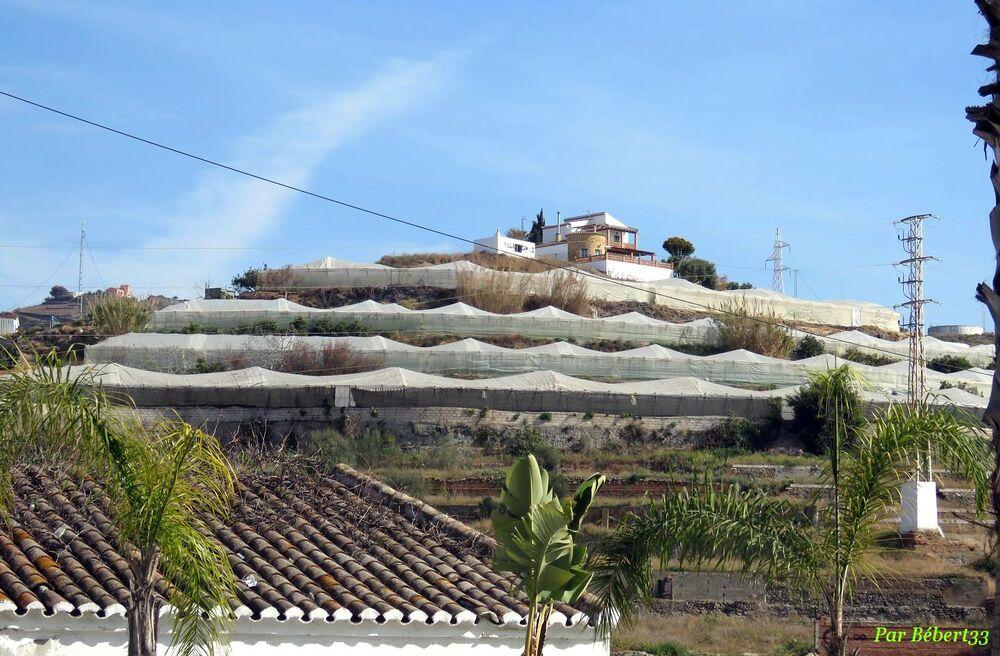 El Faro de Torox