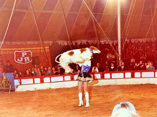 lea barzois de Barbara Hochegger au cirque Pinder-jean Richard en 1975 ( archives Dominique Gallant)