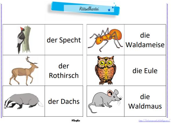 Rätselkartei - Wildtiere