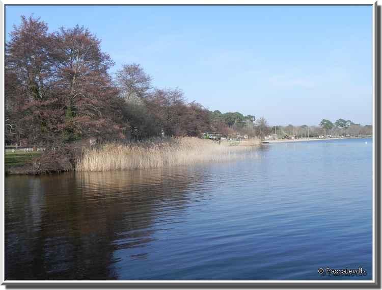 Le Moutchic - Lac de Lacanau