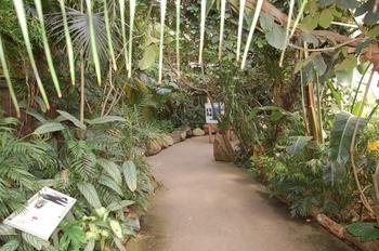 zoo cologne d50 2012 114