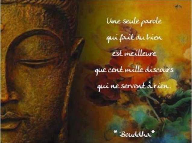 Bouddha - 37 Citations