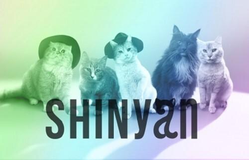 """Le groupe SHINyan fera ses débuts officiels avec le titre """"Because Of You For Cat"""""""