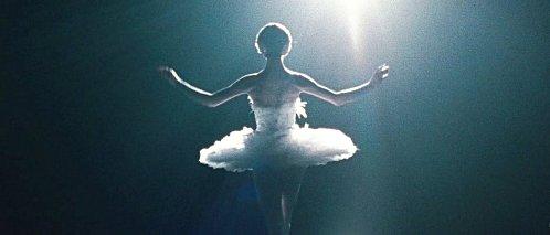 Black Swan (11)