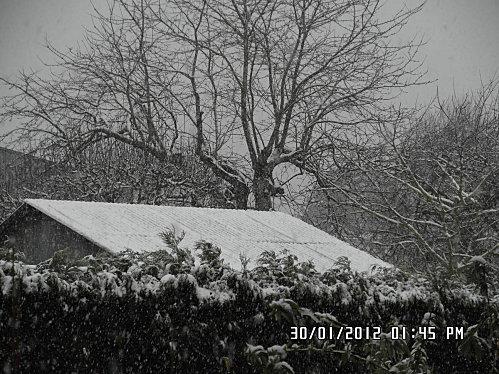 neige-30-01-2012-063.JPG