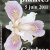 affiche_fete_plantes_cardroc.jpg