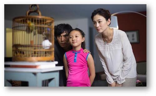 LE PROMENEUR D'OISEAU : découvrez la bande-annonce ! Le 7 mai 2014 au cinéma.