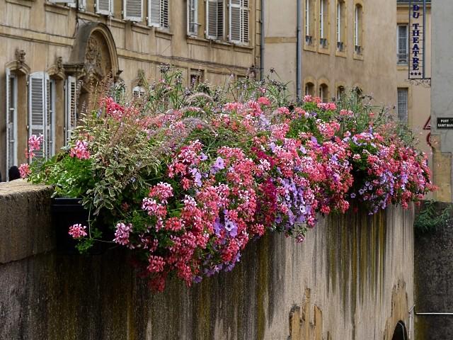 Metz ville fleurie 5 Marc de Metz 2011