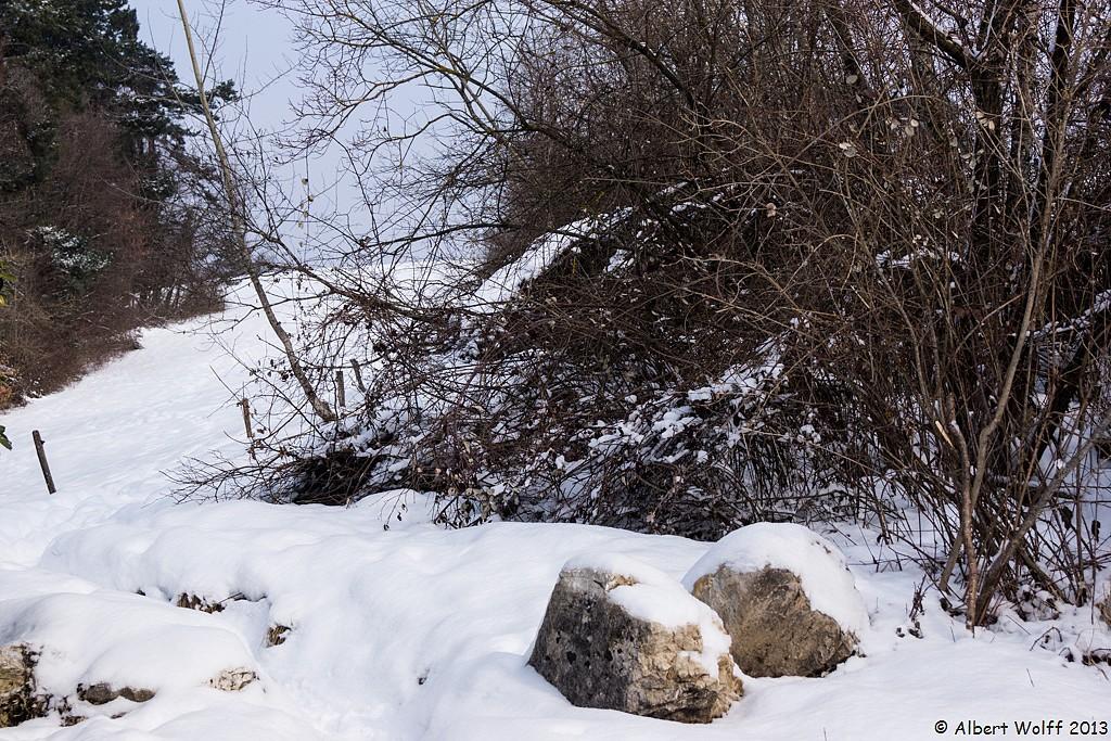 Neige fraîche à Annecy le Vieux - 1