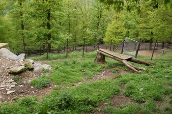 Parc animalier Bouillon 2013 enclos 196