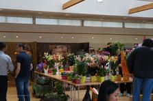 Créations florales - L'Orchidée à Neuvecelle