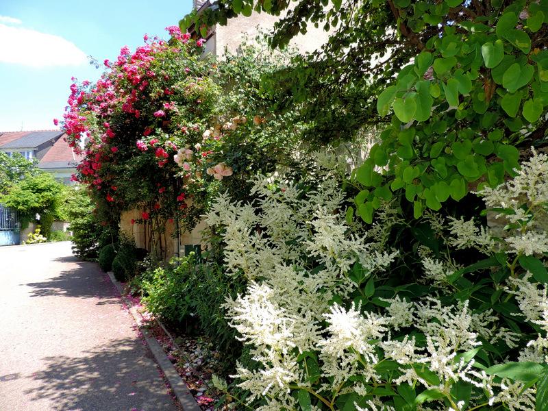 Chedigny village jardin de touraine le nouveau blog de shuki for Jardin a visiter