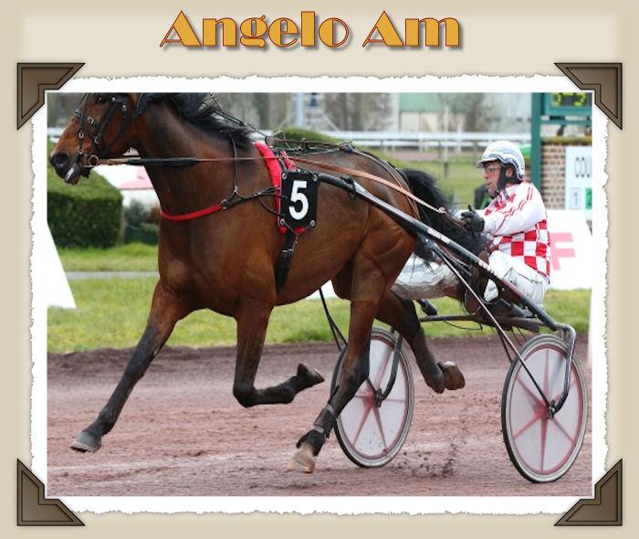 Angelo Am