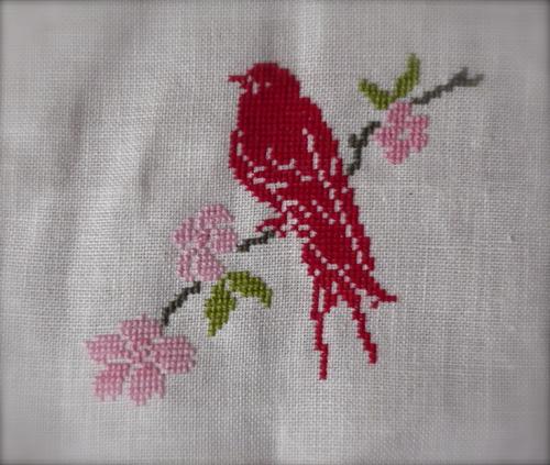 Oiseau Luli