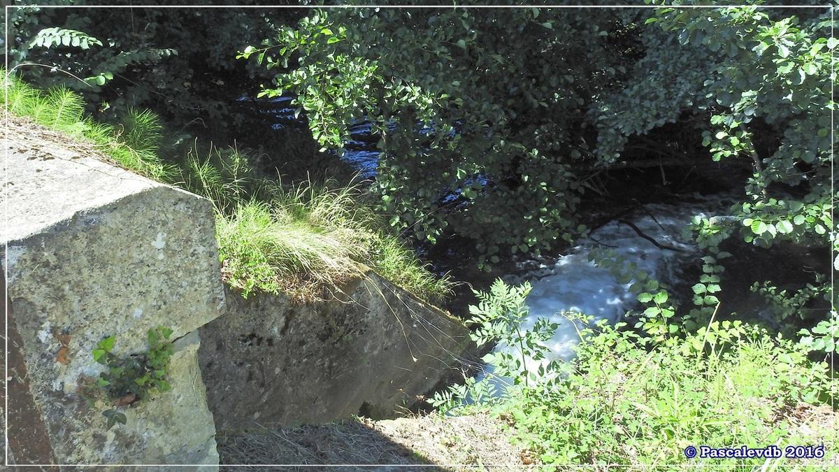 Le long du canal latéral à la Garonne - Août 2016 - 1/12