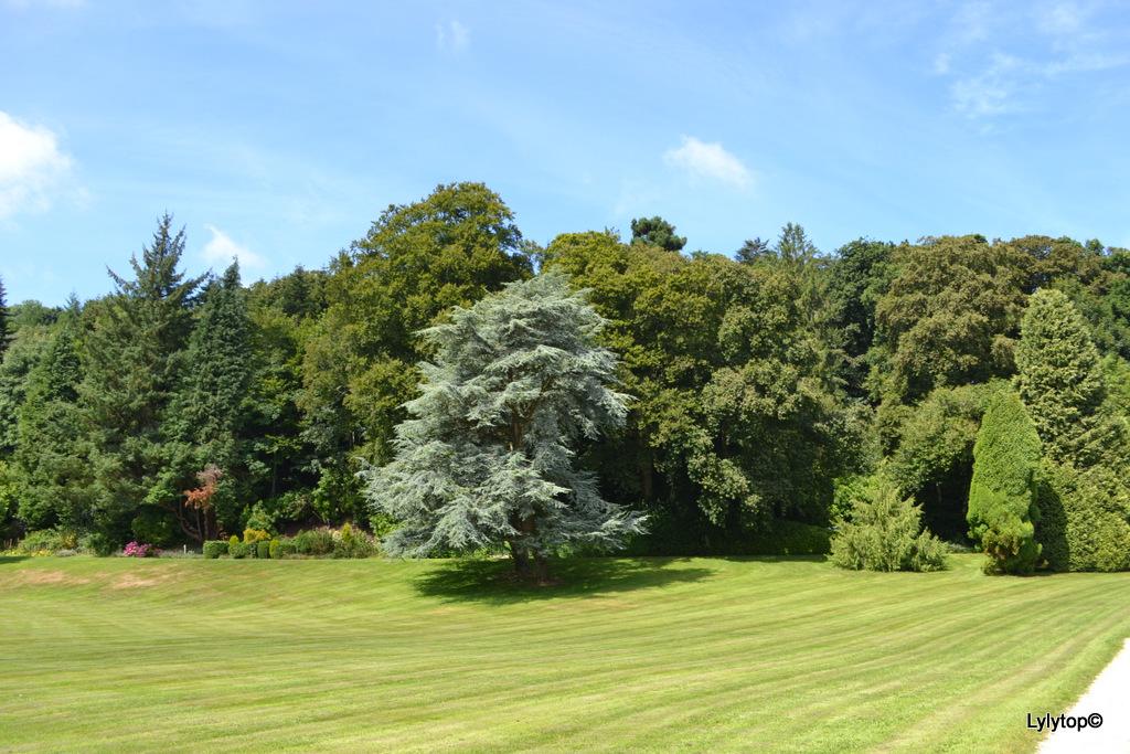 Le parc du château de Nacqueville en compagnie des petits enfants.