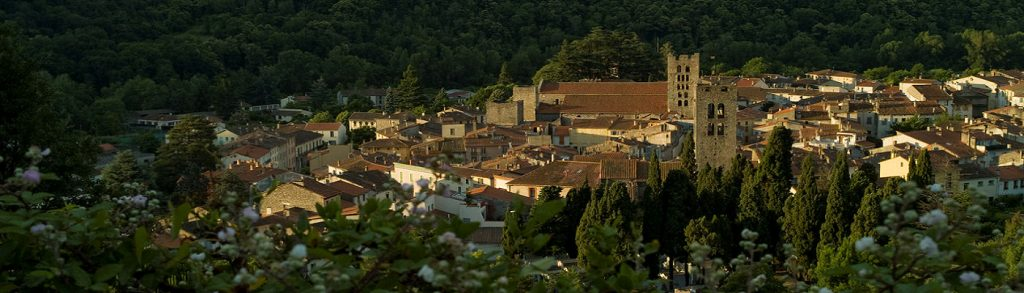 Mairie d'Arles Sur Tech
