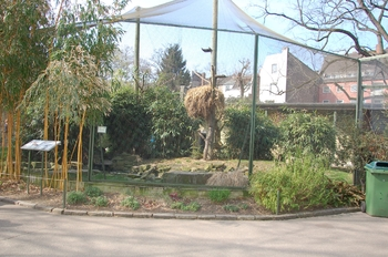 zoo cologne d50 2012 152