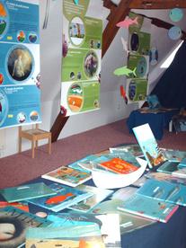 Expos, ateliers, rencontres 2010