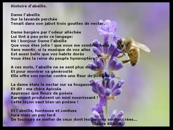 Auteur : Claude BRAUN.