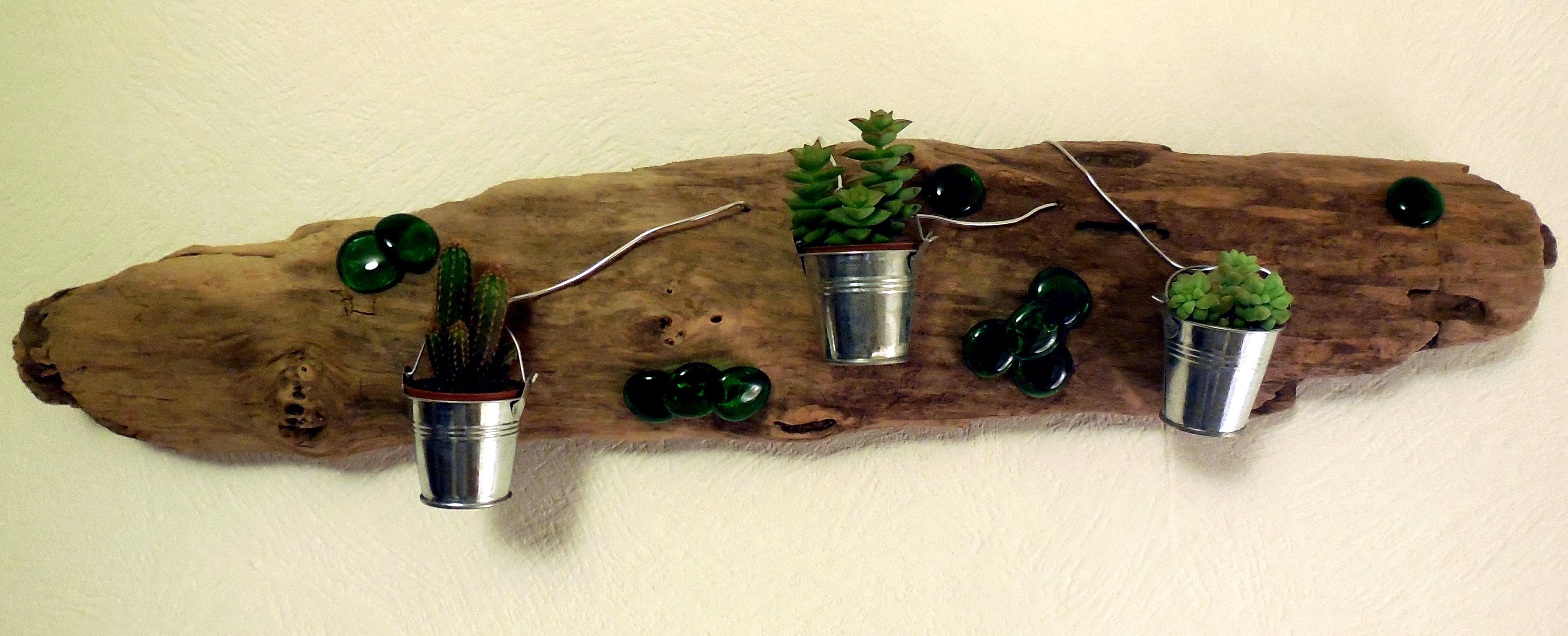 support en bois flotté. (plantes: minis cactées) - récup'création!