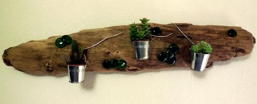 Support en bois flotté ( Plantes: minis cactus)