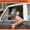 hippomobile.jpg