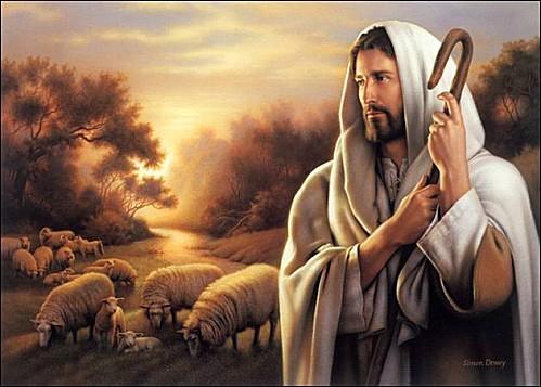 jesus brebis