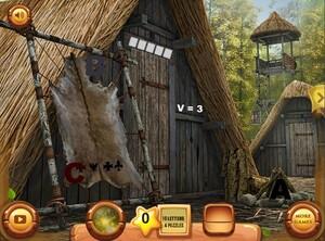 Jouer à Viking village
