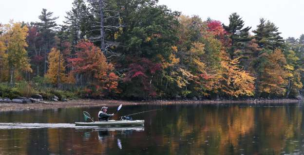 In this Tuesday, Oct. 13, 2015, photo, Bruce Hughes, of Hudson, N.H., paddles past trees turning color while heading out to fish for rainbow trout at Canobie Lake in Salem, N.H. New England's fall foliage is a little less glorious this autumn, as experts