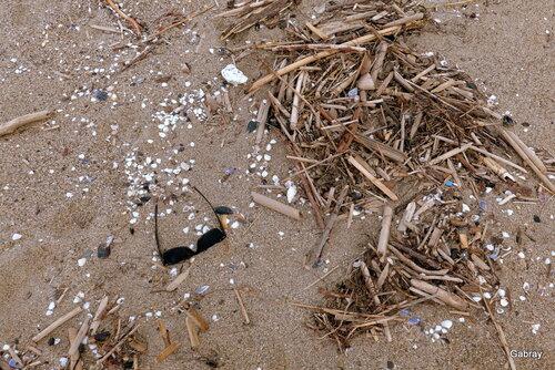 Le Barcarès : la plage en automne...