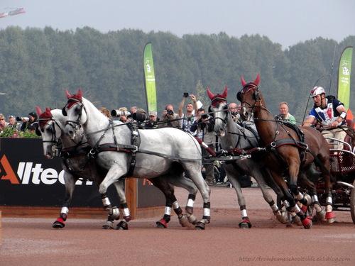 Jeux équestres mondiaux - Caen 6/9/14