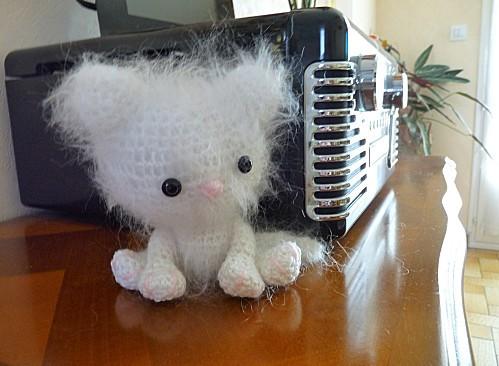 chaton-blanc.jpg