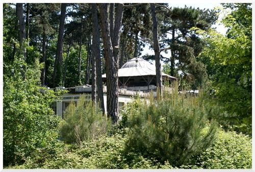 Le Jardin Tropical