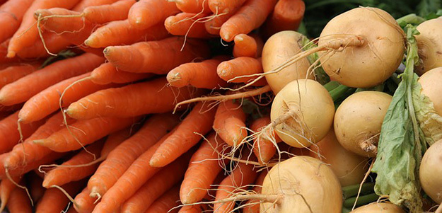 carottes-navets-legumes-de-saison-mars