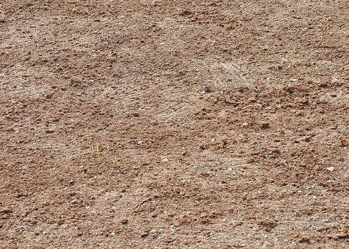 Jardin ou Potager : Une terre en pleine forme,c'est l'idéal