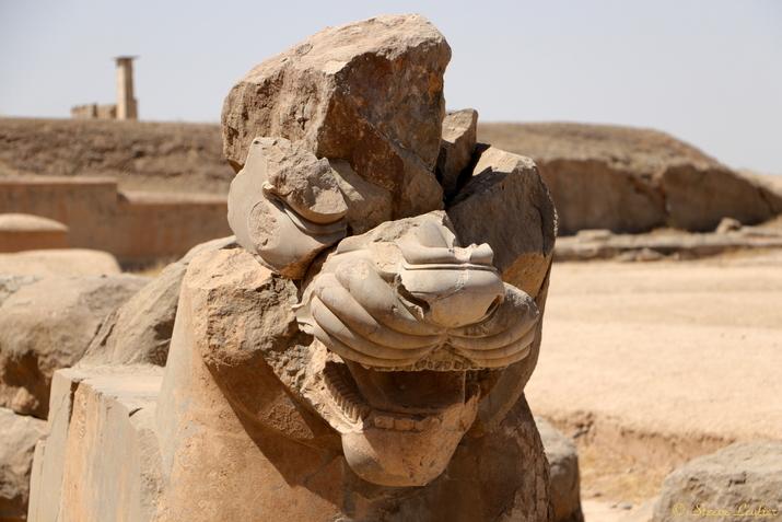 L'Apadana, Persépolis
