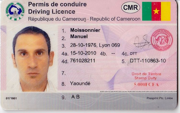 how to order an internatinal drivers licence