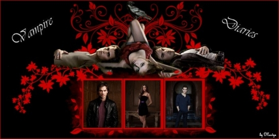 the vampires diaries B.jpg