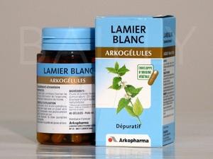 Vertus médicinales des plantes sauvages : Lamier blanc
